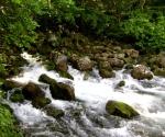 River Pliva